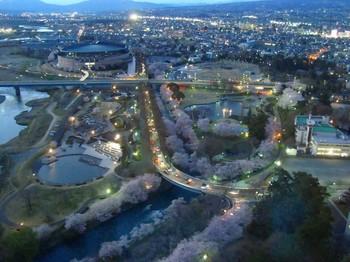 前橋公園.jpg